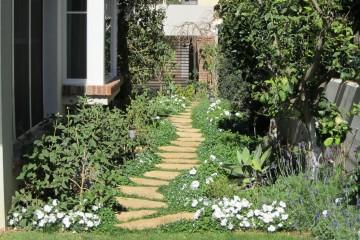 למה כן גינה עם דשא וצמחייה עשירה